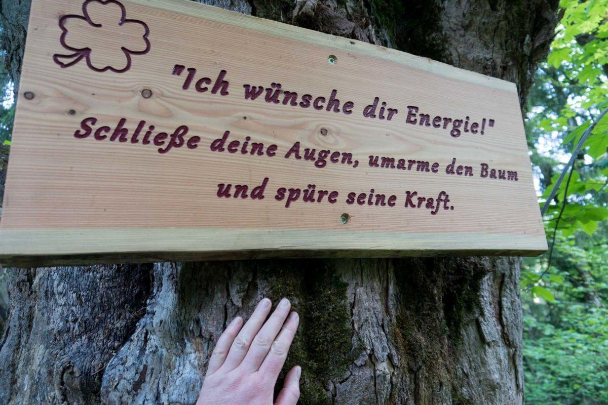 wuenscheweg_2019_06_05-35-von-94
